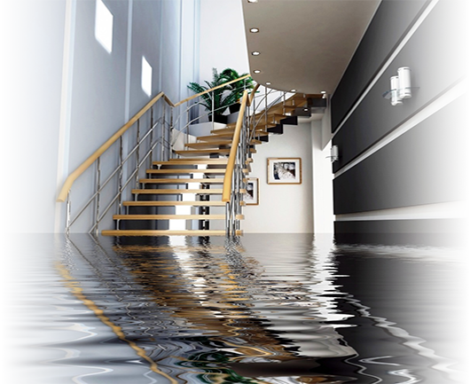 Water Damage Restoration in the Miami and Fort Lauderdale