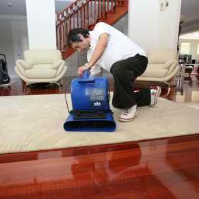 Carpet Drying 250x250