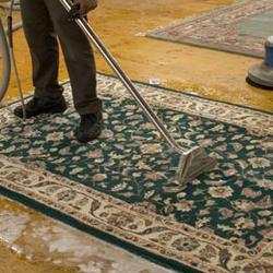 Carpet Cleaning Solutions In Gold Coast
