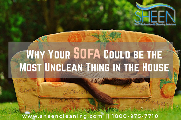Why Your Sofa Could be the Most Unclean Thing in the House