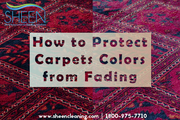 How to Protect Carpets Colors from Fading