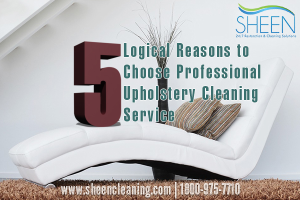 upholstery cleaning weston