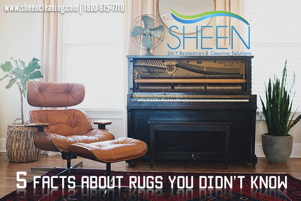 5 Facts About Rugs You Didn T Know