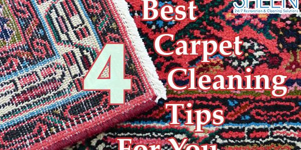 Carpet cleaning in Brickell