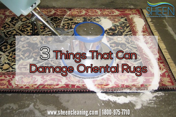 oriental rug cleaning boca raton