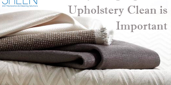 upholstery cleaning miami