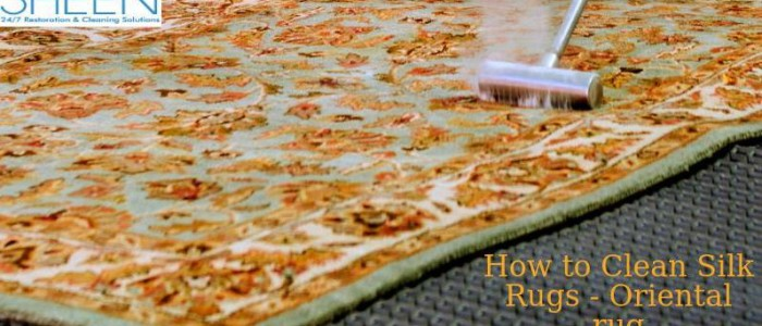 oriental rug cleaning brickell